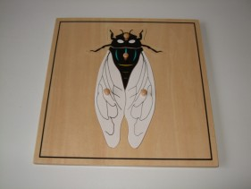 Fly Puzzle