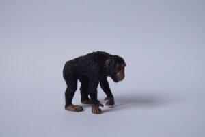 Chimpanzee                         L5.5  H 5 cm