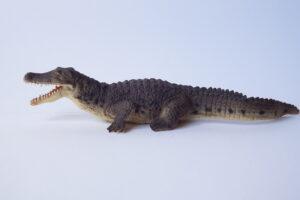 Crocodile                               L 18  H 4 cm