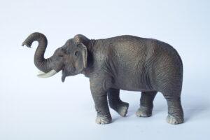 Asian elephant                    L 15  H 8.5 cm