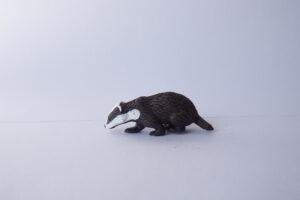 Badger                                    L 7  H 2.5 cm
