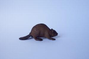 Beaver                                    L 5.5  H 3.5 cm