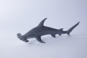 Hammerhead shark             L 15.5  H 5.5 cm