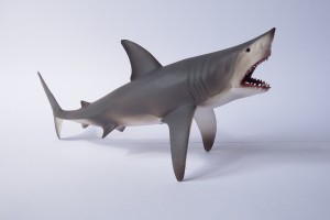 Great white shark                 L 20  H 9.5 cm
