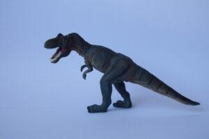 Tyrannosaurus rex                 L 18.5  H 9 cm
