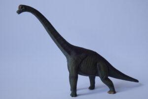 Brachiosaurus                         L 21.5  H 15 cm