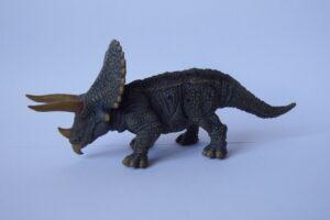 Triceratops                              L 19  H 8 cm