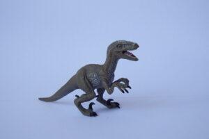 Velociraptor                            L 10  H 6 cm