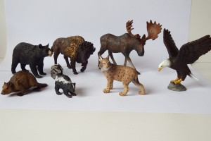 North America        collection